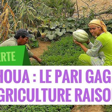 Exemple d'un village marocain qui a pu mettre en place un système durables et productifs d'agriculture, grâce à la permaculture, et sortir de la misère.
