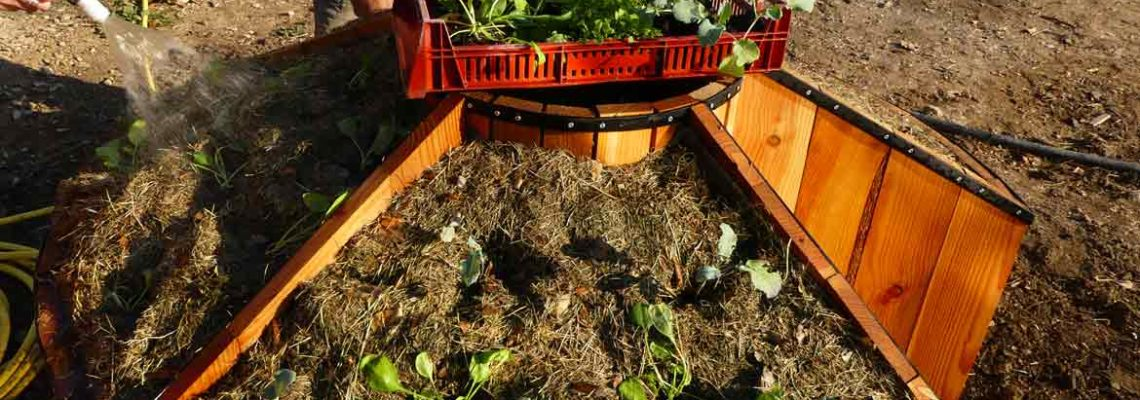 Le keyhole accueille ses premières plantations !